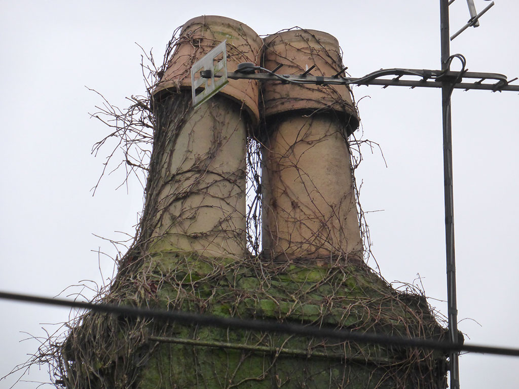 Chimney and cans covered in vegetation